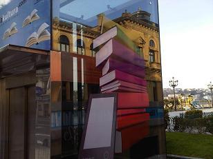 Biblioteka Nagusia Alderdi eder-helduen saila